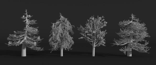 marjorie-grinda-trees-01